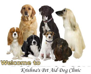 Krishna pet aid Dog Clinic - Nawanshahr