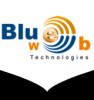 Blue Web Solutions - Ghaziabad