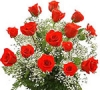 Send Flowers to Mumbai | Gifts | Sangli | Florist | Online Cake Delivery | India | Birthday | Shop | - Mumbai